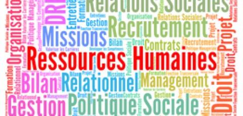 Offre d'emploi - Chargé de développement RH Senior Recruteur et développeur de talents